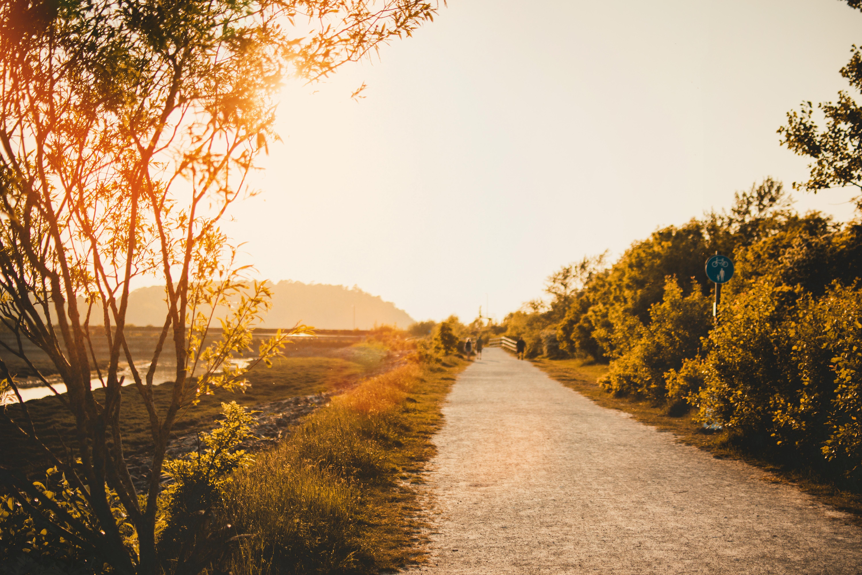 countryside-dawn-daylight-1125347